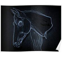 Equine Outline Poster