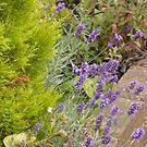 Secret Garden by Faille