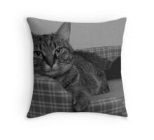 Miss Gracie Throw Pillow