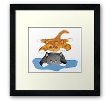 Nap Interrupted by Tiger Kitten Framed Print