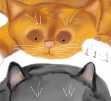 Nap Interrupted by Tiger Kitten Sticker