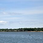 Charlottetown Harbour by Craig B
