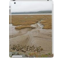 Mawddach Mud iPad Case/Skin