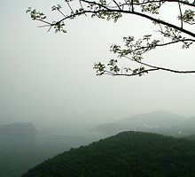 Bangchuidao Overlook Foggy Morning by snoshuu