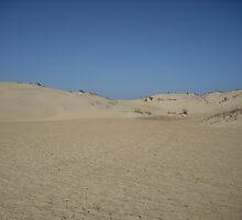 Between the Dunes by NikkiV
