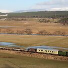 Steam train with wagons  by Teuchter