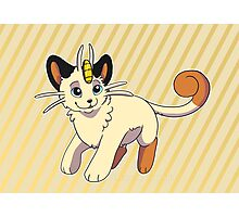 Cutie Meowth Pokemon  Photographic Print