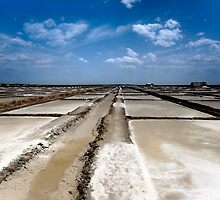 Salt pans of Marakkanam by Vikram Franklin