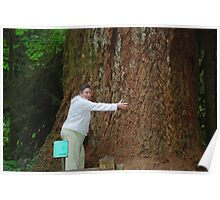 Trying to Hug a Tree!! Poster