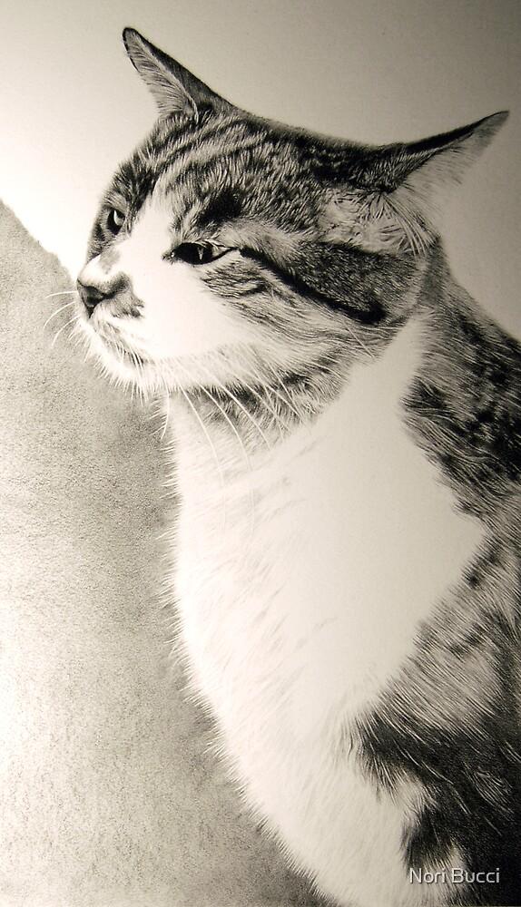 Kitty Commission by Nori Bucci