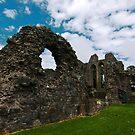 Inch Abbey, Downpatrick by Alan McMorris
