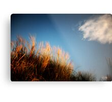 Grass (with cloud) Metal Print