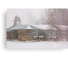 Country Snowstorm Metal Print