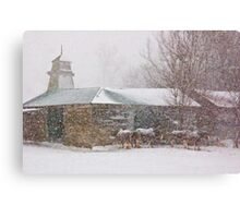 Country Snowstorm Canvas Print