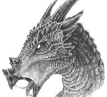 Dracorex by ChickenChaserLH