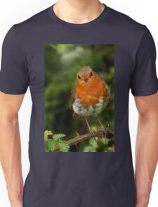 Robin Red Breast Unisex T-Shirt