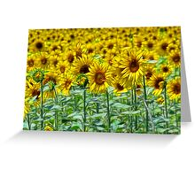 Sunnyside Up Greeting Card