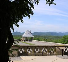 Patio overlooking the Blue Ridge by Richard Harshaw