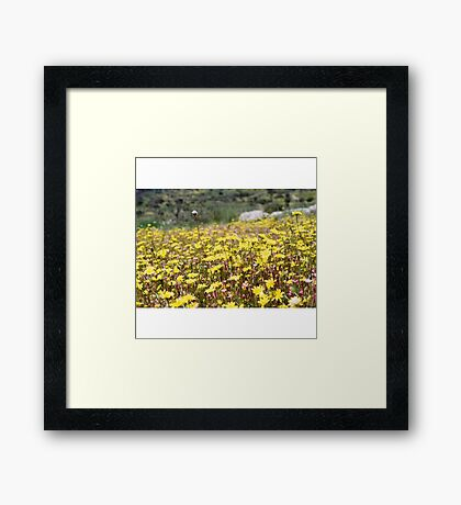 Let's watch the flowers grow Framed Print
