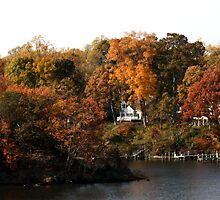 Annapolis in the Fall by Jonathan  Yuen