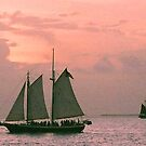 sailing in key west  by Amber Finan