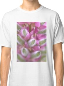 Come hither Classic T-Shirt