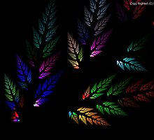 Colorful Leaves by Masoud Ahmed