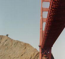 Under The Golden Gate Bridge by dbronco928