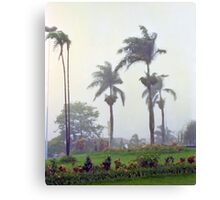 Brazilian Monsoon Canvas Print