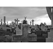 Grave yard Sydney Photographic Print