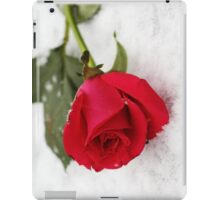 A rose on the snow iPad Case/Skin