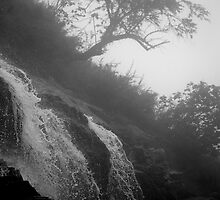 Misty Waterfall by Andrew Willesee