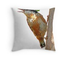 Red - breasted Nuthatch  Throw Pillow