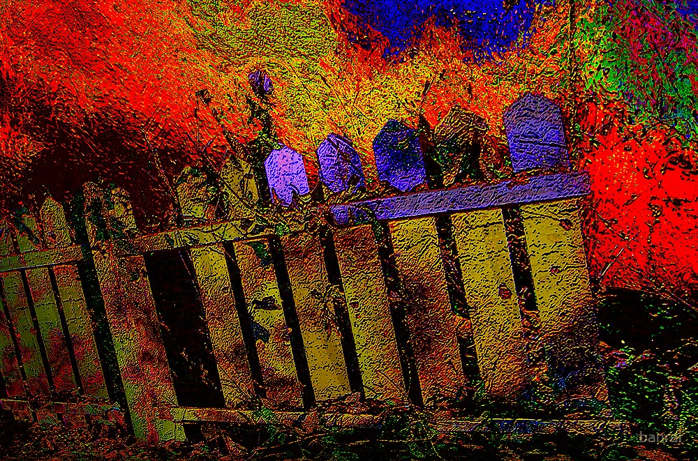 fenced in.... pushing color... by banrai