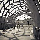 Inside the Webb by benthebrown