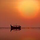 beauty by AroonKalandy