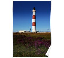 Tarbat Ness Lighthouse Heather Poster