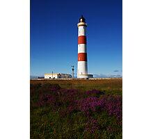 Tarbat Ness Lighthouse Heather Photographic Print