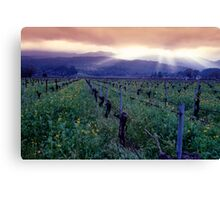 Spring Sunset Over Napa Valley Canvas Print