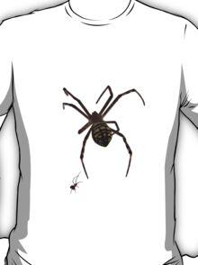 Big Spider Little Spider Tshirt & Sticker T-Shirt