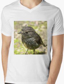 New Zealand Robin Mens V-Neck T-Shirt