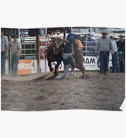 Bull vs rider Poster