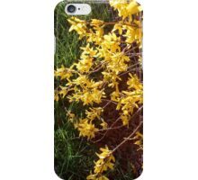 Yellow Flowers iPhone Case/Skin