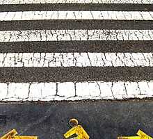 What way?, New York City, USA by Sabine Jacobs
