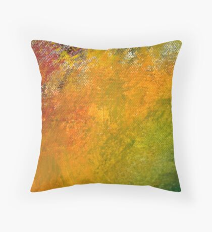 Paint Coulour Throw Pillow