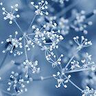 Summer snow by MistyIslet