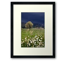 Mother's Little Nature Framed Print
