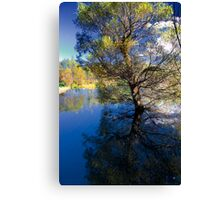 The Pond of Reflection Canvas Print