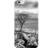 The Lonely Tree iPhone Case/Skin