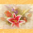 """""""A Gentle Wish"""" Scarf~Gold Textured Borders by Susan Werby"""